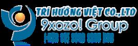 Thiết kế website Trí Hướng Việt